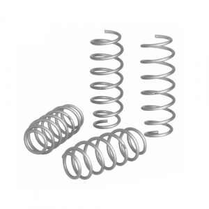Eibach E30-51-018-01-22 Pro-Lift-Kit Springs for 2015-2018 Jeep Renegade 4WD