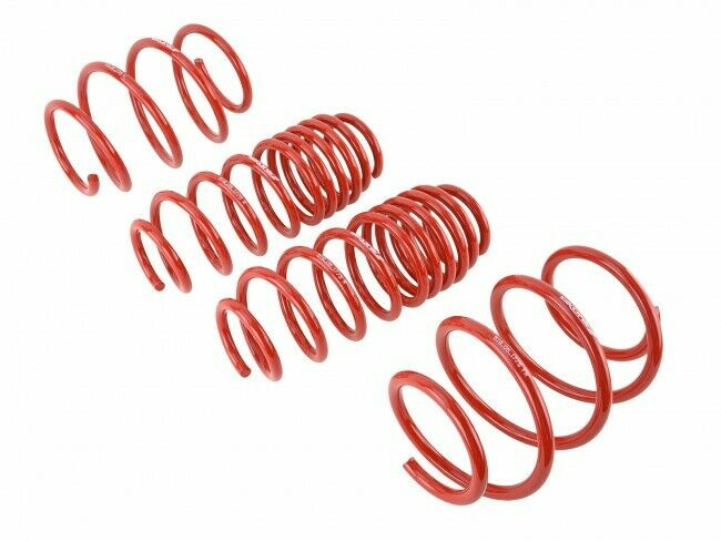 Skunk2 Racing 519-05-1775 Lowering Springs Kit for 2016-2018 Honda Civic